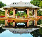 our-garden (1)