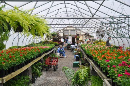 Volunteer huntsville botanical garden - Huntsville botanical gardens hours ...